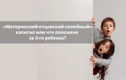 «Материнский-отцовский-семейный» капитал или что положено за 3-го ребенка?